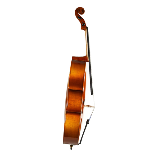 Standard Series Cello Rental 2018